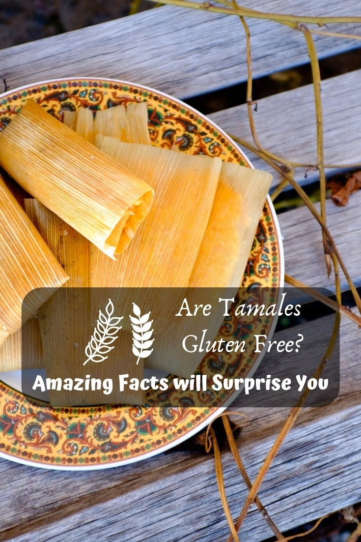Are tamales #gluten free? 👨🏽‍🍳 Amazing facts will surprise you! #foodie