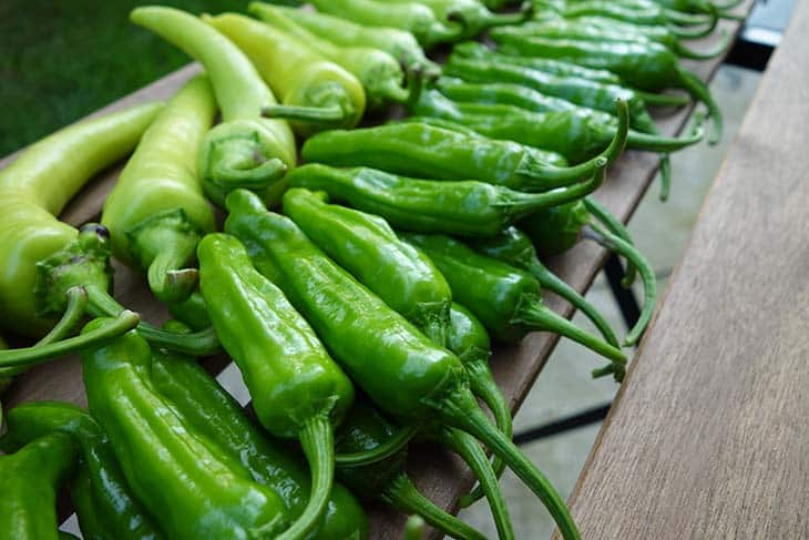 Pepperoncini Vs Banana Peppers Discover Their Benefits