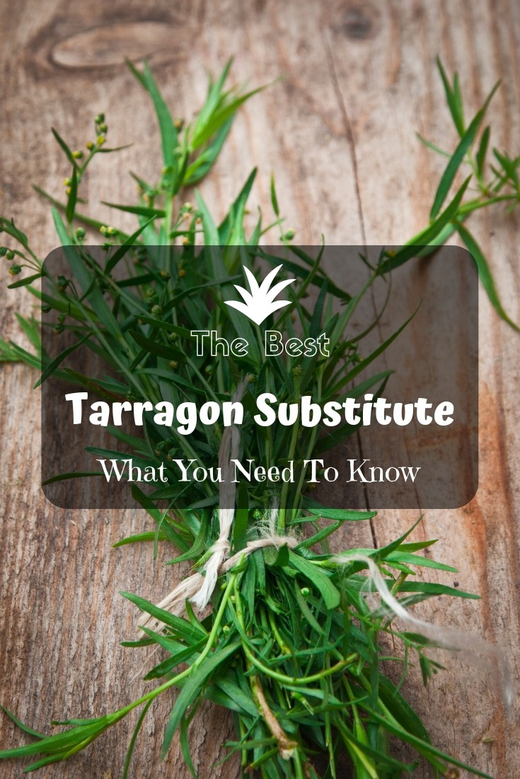 Here is another #cooking tip for ya. ⭐️ The best #tarragon substitute: What you need to know!