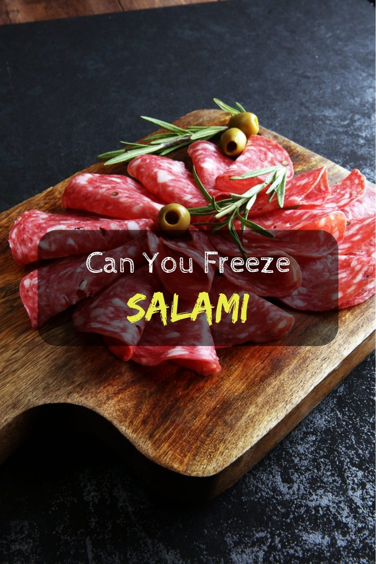 Can you freeze salami – all things you need to know. Important and helpful #cooking tips.