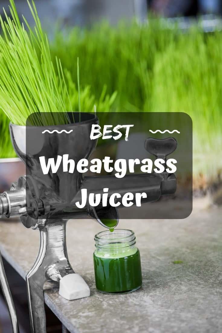Best #wheatgrass #juicer of 2018 – go grind green grass!