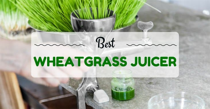best-wheatgrass-juicer