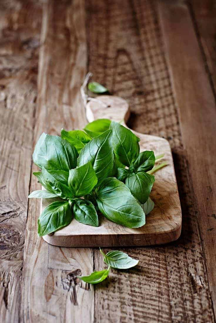 Basil leaves are arguably THE most popular and versatile herb out there. This is why we need to know how to preserve basil and keep it fresh.  #Basil #Herbs #InTheKitchen
