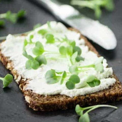 How to freeze cream cheese without stress